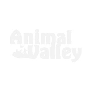 Collier pour chat en nylon rouge