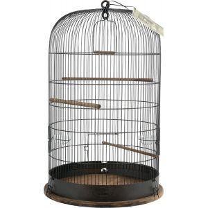 Cage-Catherine-Argent---Zolux