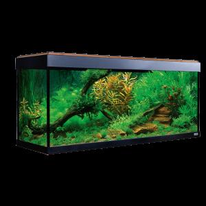 Aquarium-ROMA-240-couleur-noyer