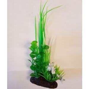 Plante-Prettyplant-17-cm-assorties