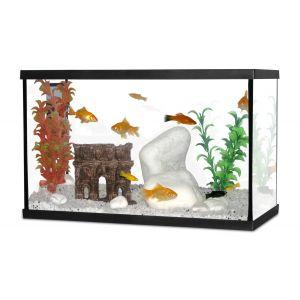 Aquarium-Scalaire-40-Noir-20L