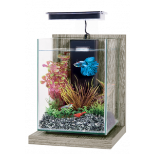 Kit-Aquarium-Wiha-Zebrano-Gris