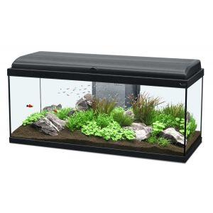 Meuble aquarium aquadream 80x30cm blanc aquatlantis for Meuble 80x30