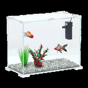 Aquarium-Aqua-NanoLife-First-24-Blanc---Aquatlantis