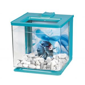Aquarium-Betta-EZ-Care-Marina-Blanc-Bleu
