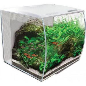 Aquarium-Flex-9-Fluval-35-Litres-Blanc