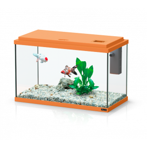 Aquarium-Funny-Fish-40-Orange---Aquatlantis