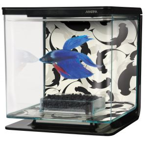 Aquarium-Marina-Betta-kit-2L-Ying-Yang