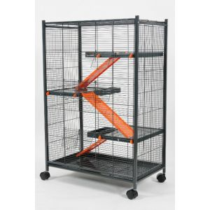 Cage-Indoor-Maxi-Loft-2---Orange