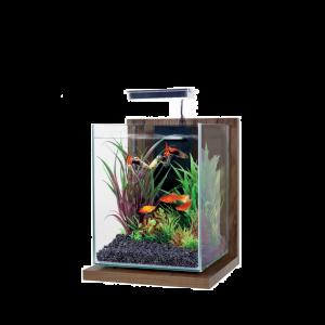 Kit-Aquarium-Jalaya-Noyer-Brun