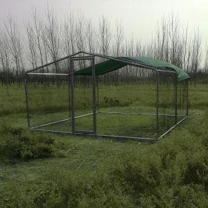 grand-enclos-poulailler-parc-grillage-renforce-tube-38mm-2x4x2.25m