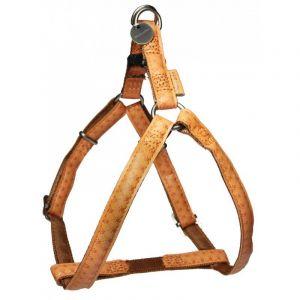 Harnais-réglable-Mac-Leather-15mm---Jaune