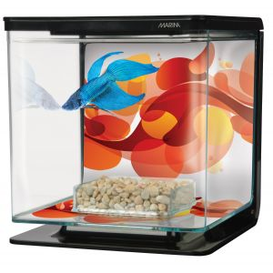 Marina-betta-kit-2l-Art-déco