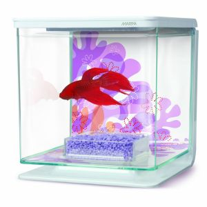 Marina-Betta-Kit-2l-Flower