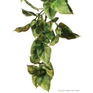 Plante-Exo-Terra-en-plastique,-amapallo,-petite