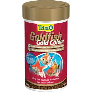 tetra-goldfish-gold-color