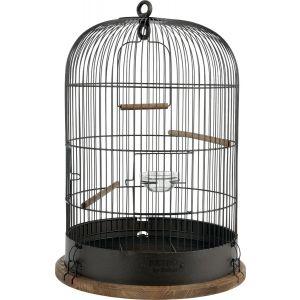 Cage-Retro-Lisette