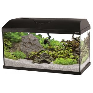 Kit-Aquarium-First-60-Noir-49L