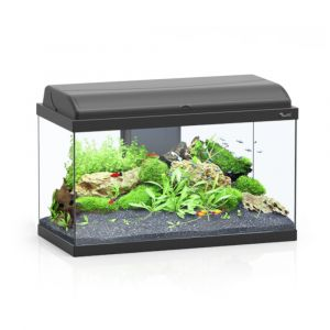 Aquarium poisson Aquadream 60 noir - Aquatlantis