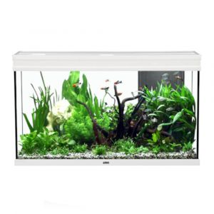 Aquarium poisson Elegance Expert 100x40 LED 2.0 blanc - Aquatlantis