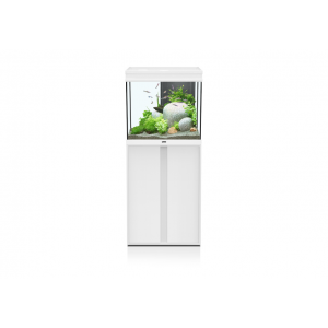 aquarium-elegance-expert-60x40-blanc-led-2-0-aquatlantis