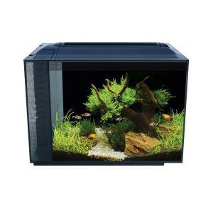 Aquarium-poisson-Spec-60-litres-noir-avec-éclairage-à-LED---Fluval