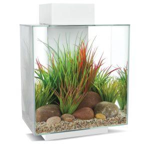 Aquarium-Fluval-Edge-46-litres-blanc