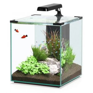 Aquarium-poisson-Nano-Cubic-40-noir---Aquatlantis