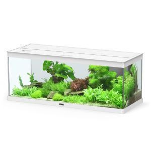 Aquarium poisson Style LED 100 2.0 blanc - Aquatlantis