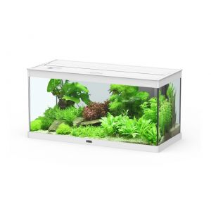 Aquarium-Style-LED-80-2.0-blanc