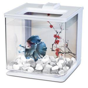 Aquarium-Betta-EZ-Care-Marina-Blanc