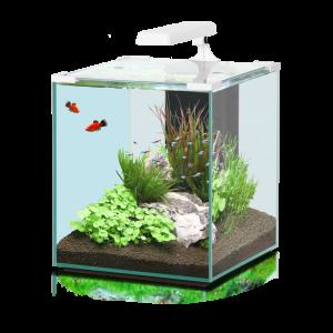 Aquarium-Nano-Cubic-40-Blanc---Aquatlantis