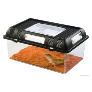 kit-complet-tortue-aqua-60x35x23cm
