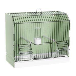 Cage-d'exposition-verte-porte-frontale-mangeoires-extérieures