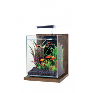 Kit-Aquarium-Jalaya-Noyer-Brun