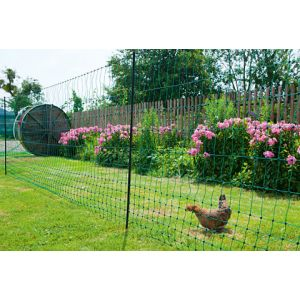 Filet-poules-50m-simple-pointe-PoultryNet
