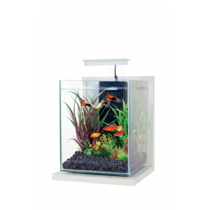 Kit Aquarium Jalaya Ceruse Blanc
