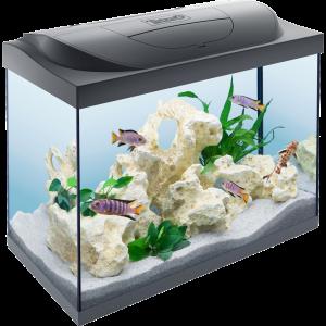 Tetra-Starter-Line-Aquarium-80L
