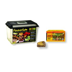 insectarium-kit-pour-insectes