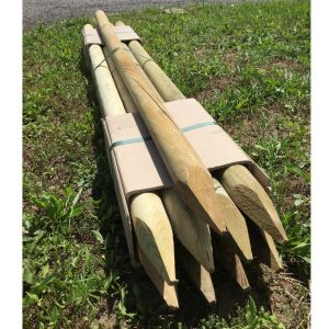 Lot de 9 piquets de bois en pin autoclave classe 3 - 150 x 5 cm