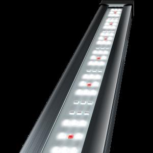 Tetra-Tetronic-Led-Proline-980