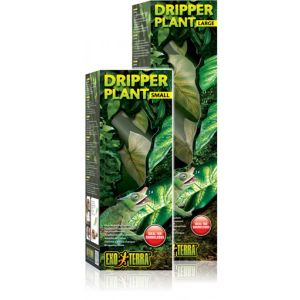 Water Dripper Plant Small - Exo Terra