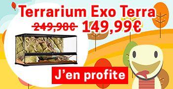 Terrarium Exo Terra