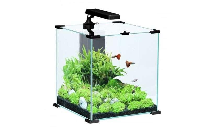 Aquarium rond, carré ou rectangulaire