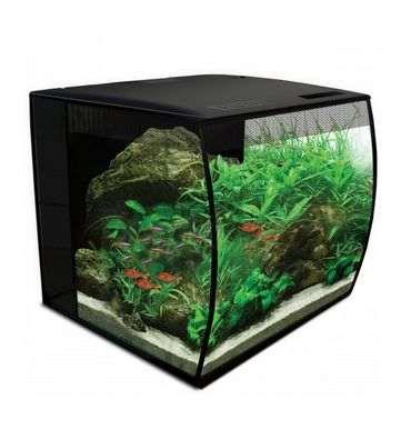 Aquarium Fluval Fex au système d'éclairage modulable