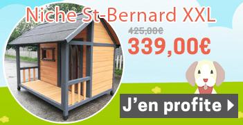 Niche Chalet Saint Bernard pour Chien Taille XXL