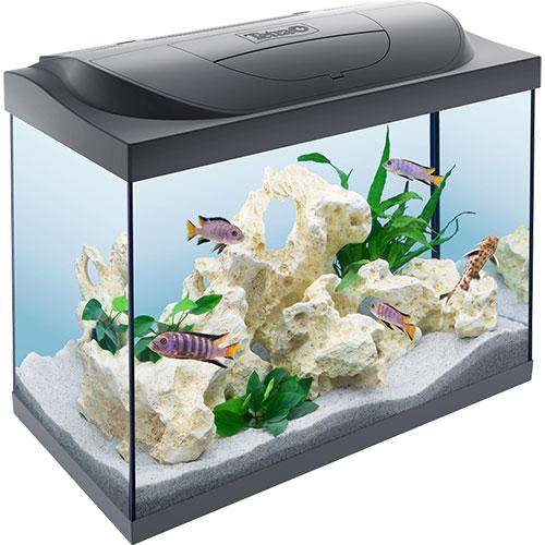 Aquarium Tetra Starter Line 80L