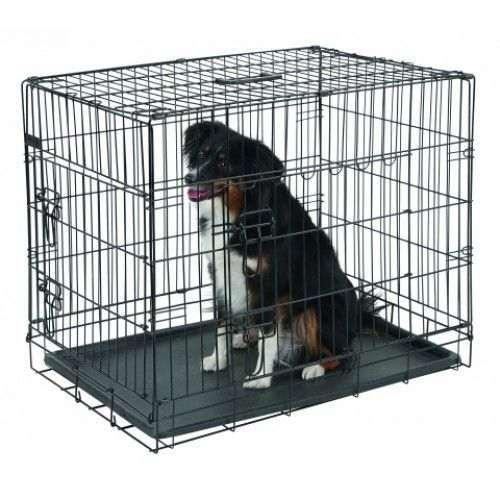 partir en vacances avec son chien comment le transporter. Black Bedroom Furniture Sets. Home Design Ideas