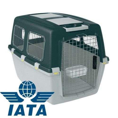 Caisse de transport pour chien homologuée IATA
