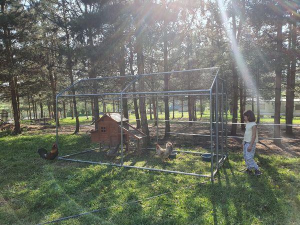 comment créer enclos poules